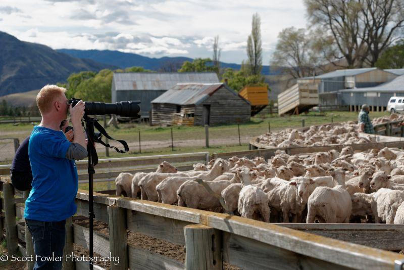 October Shearing workshop 2016-24