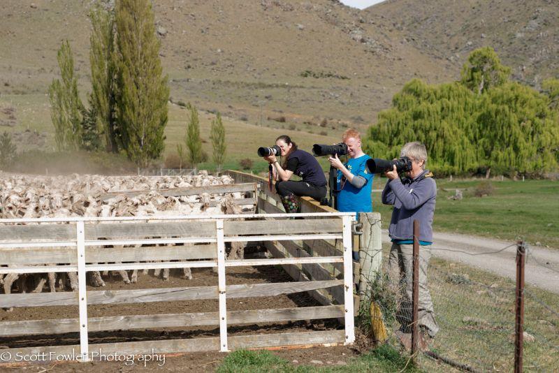 October Shearing workshop 2016-25