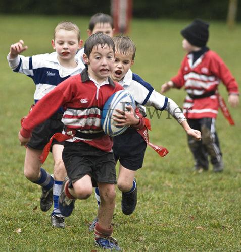 Ripper Rugby 24