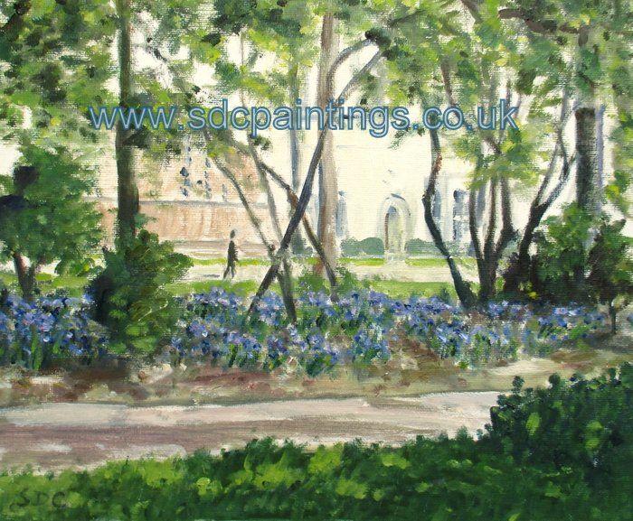 Bluebells In Christ Church Gardens