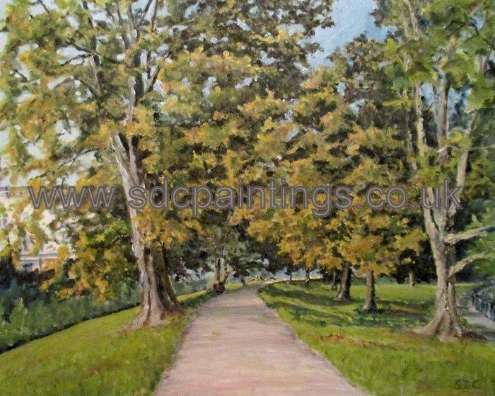 Horse Chestnut Trees In The Jephson Gardens