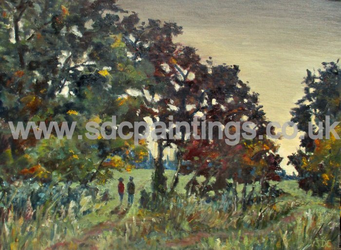 Meadow At Evening