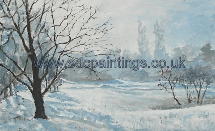 Trees In The Snow (Newbold Comyn)