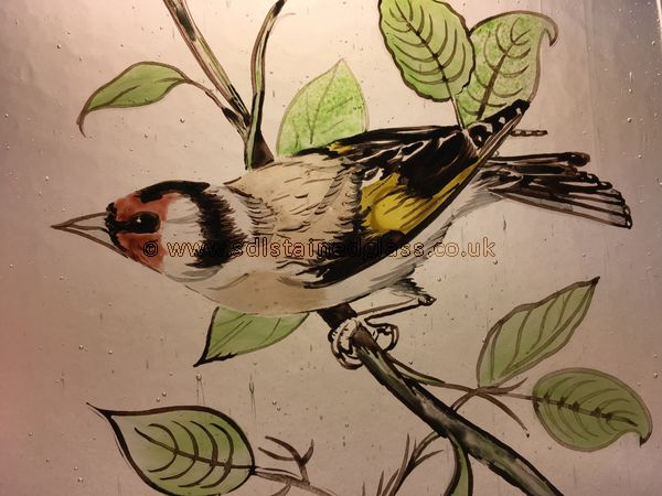 Painted goldfinch