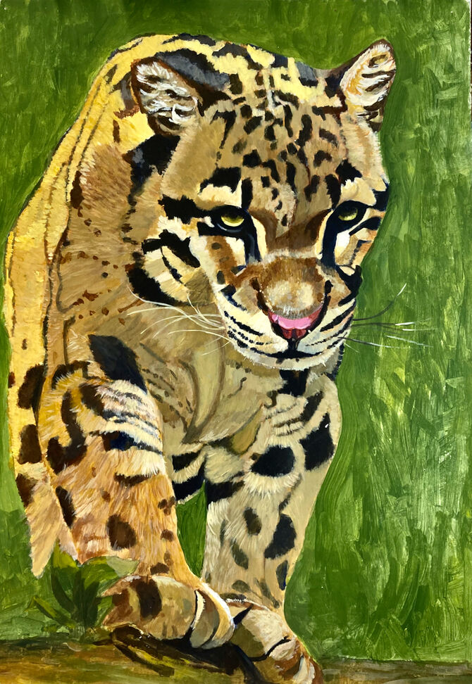 Wildlife art Leopards Clouded Leopard Acrylic Painting