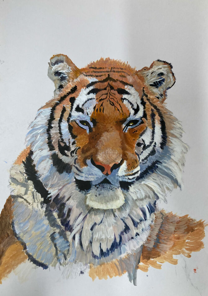Tigers, Siberian Tiger Wildlife Art, Acrylic painting