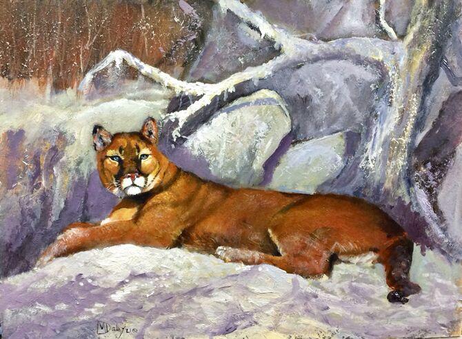 Puma, Cougar wildlife art