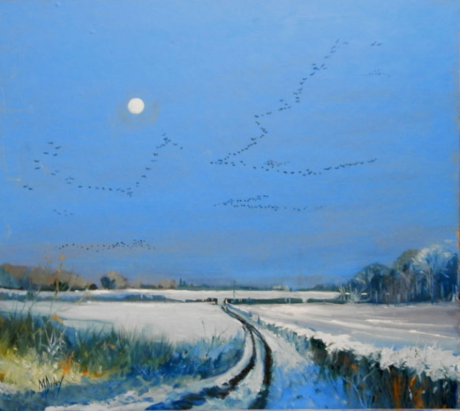 Winter geese - Holkham