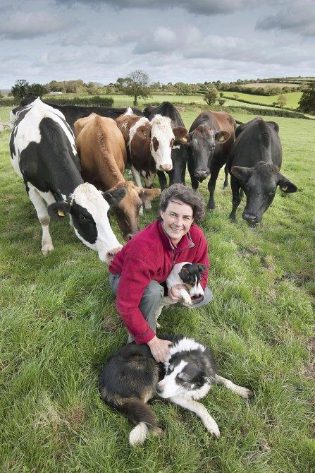 Western Morning News Farming