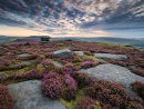 Summer morning at Over Owler Tor
