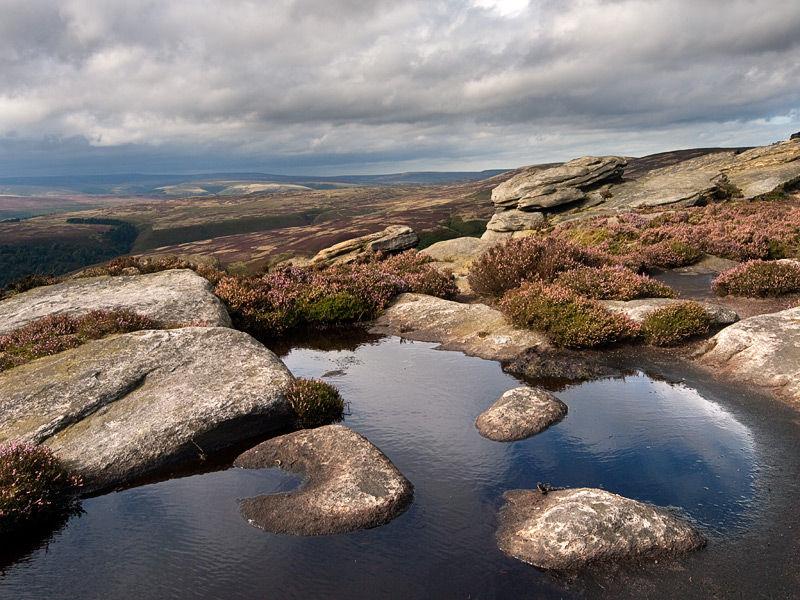 3 stones in a peat bog
