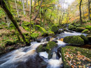 Burbage Brook at Padley Gorge