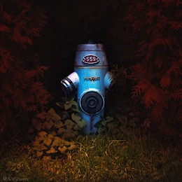 Hydrants Polis