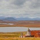 Tweed Coloured Landscape