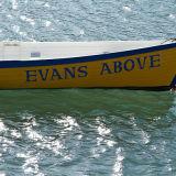 evans above