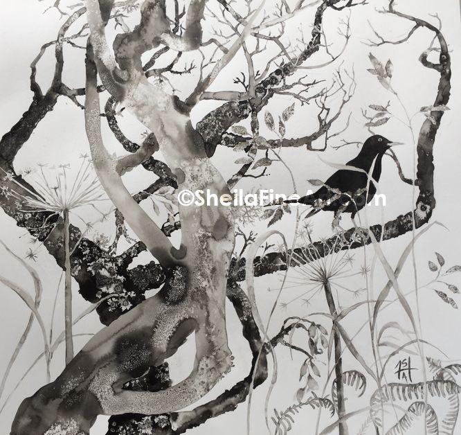 Blackbird in Thicket