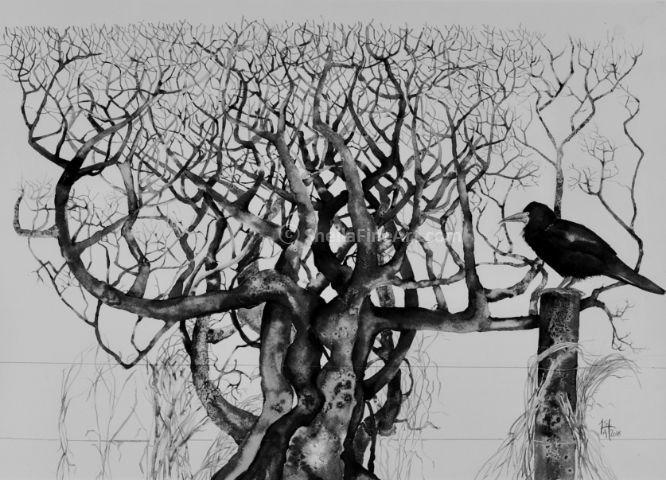 Crow Post 1