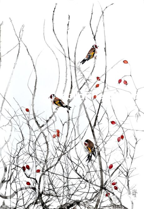 Goldfinches and Rose-hips