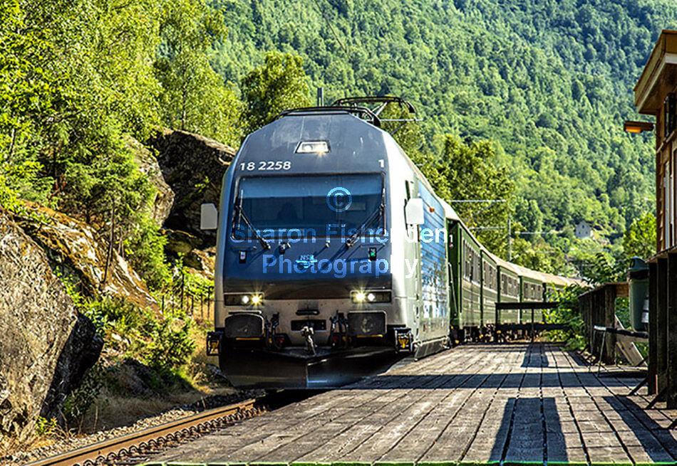 4083-Flam No 18 2258 train into station