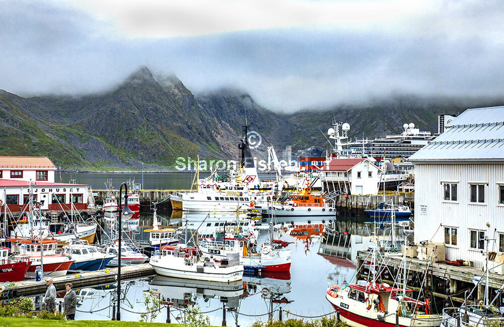 4097-Honnigsvag harbour boats cloud on mountains