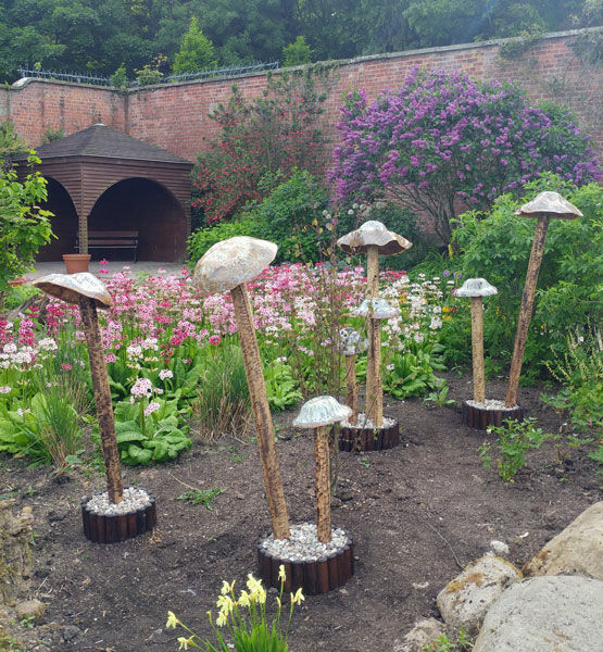 Woodland Mushroom