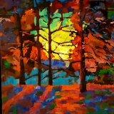 Woodland scene - Daybreak