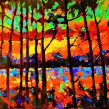 Elveden Forest - Sunset