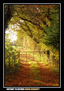 Gateway to Autumn