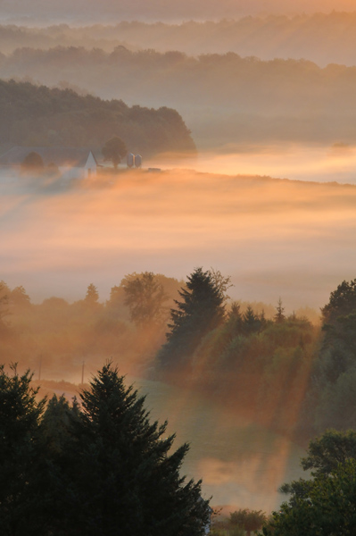 Mists of France
