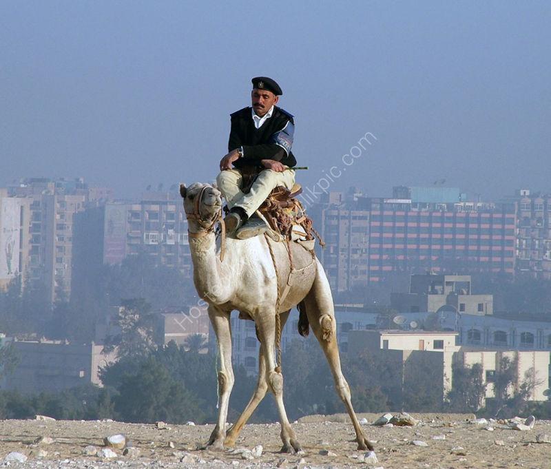 Policeman on a Camel