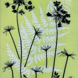 Umbellifer & Fern 2 - SOLD