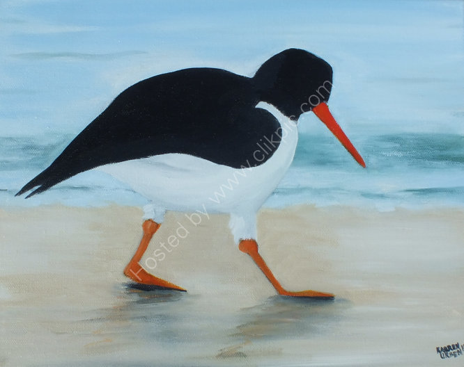 Oystercatcher on the sand