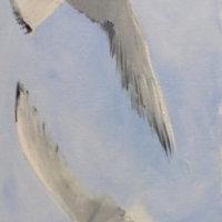 Gulls in flight. SOLD