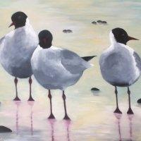 Trio of Gulls on a Norfolk beach