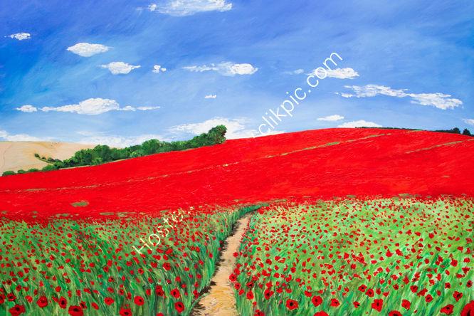 """""""Sompting Poppy Fields"""""""