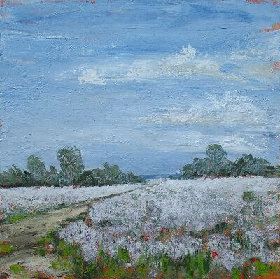 Field of Pink Poppies 60x60x4