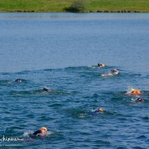 16. Swimmers