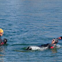 3. Swimmers