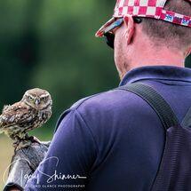 5. Little Owl & Trainer
