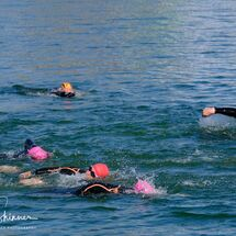 9. Swimmers