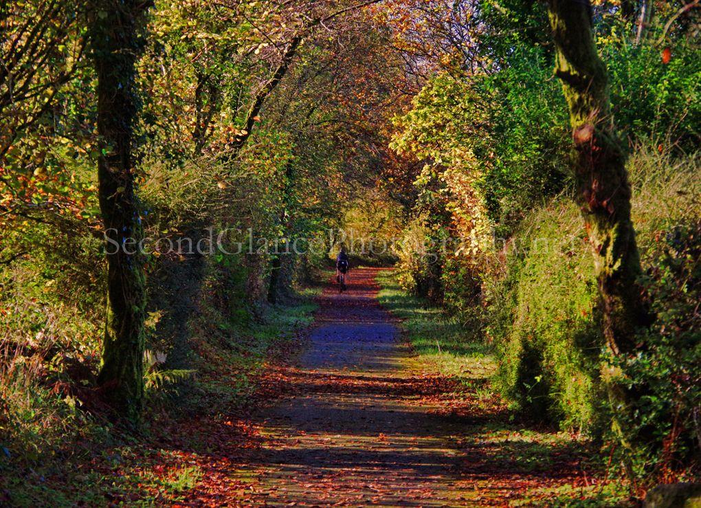 Autumn 1 (23)