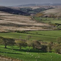 Betws Windfarm  (2)