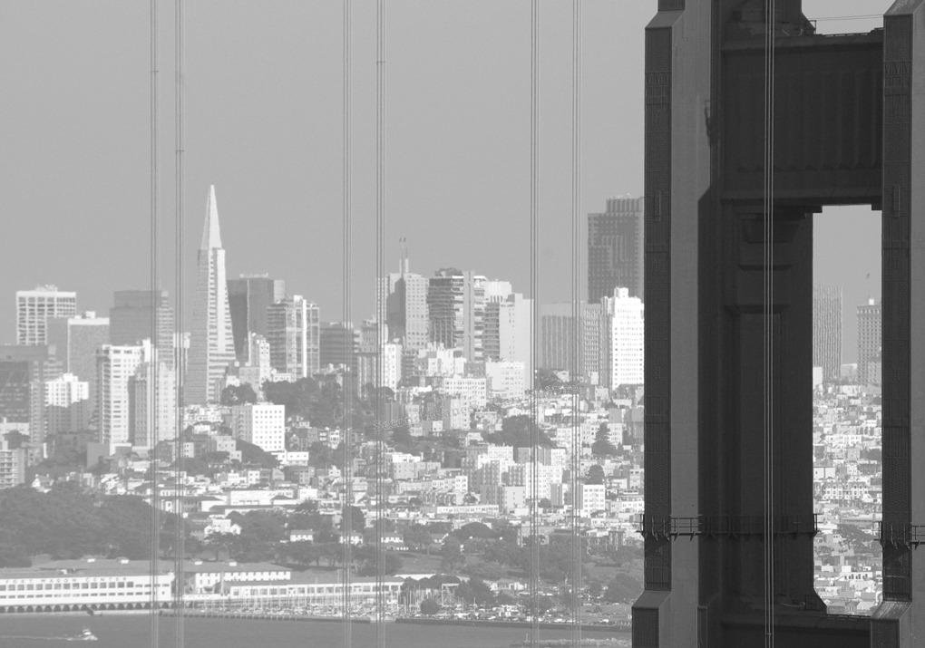 City Vista - mono