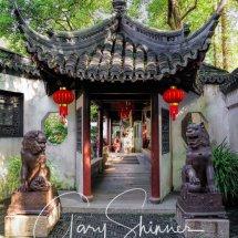 DAY 12 -20 Shanghai - Old Town, Yuyuan Gardens