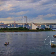 DAY 14 -42 Japan - City Tour, Senso-Ji Temple, Imperial Gardens, Ginza Shopping