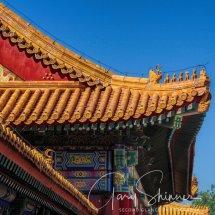 DAY 2 -22 Tiananmen Sq & Forbidden City