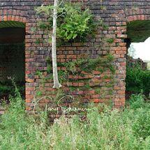 Doorways Penwyllt