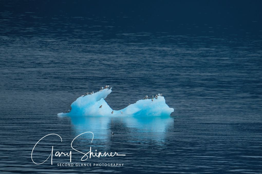 Floating Ice mass 1
