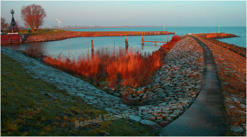 Frosty Morning – Medemblik Netherlands