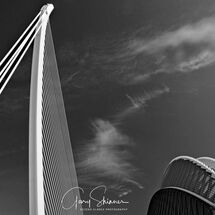 Gold Dam Bridge Valencia